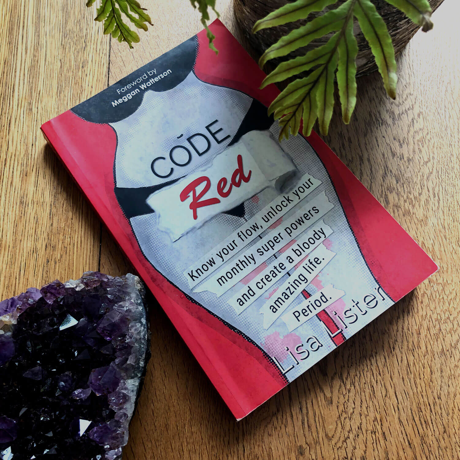 Code red book on wooden surface with amethyst geode and fern pot plant.