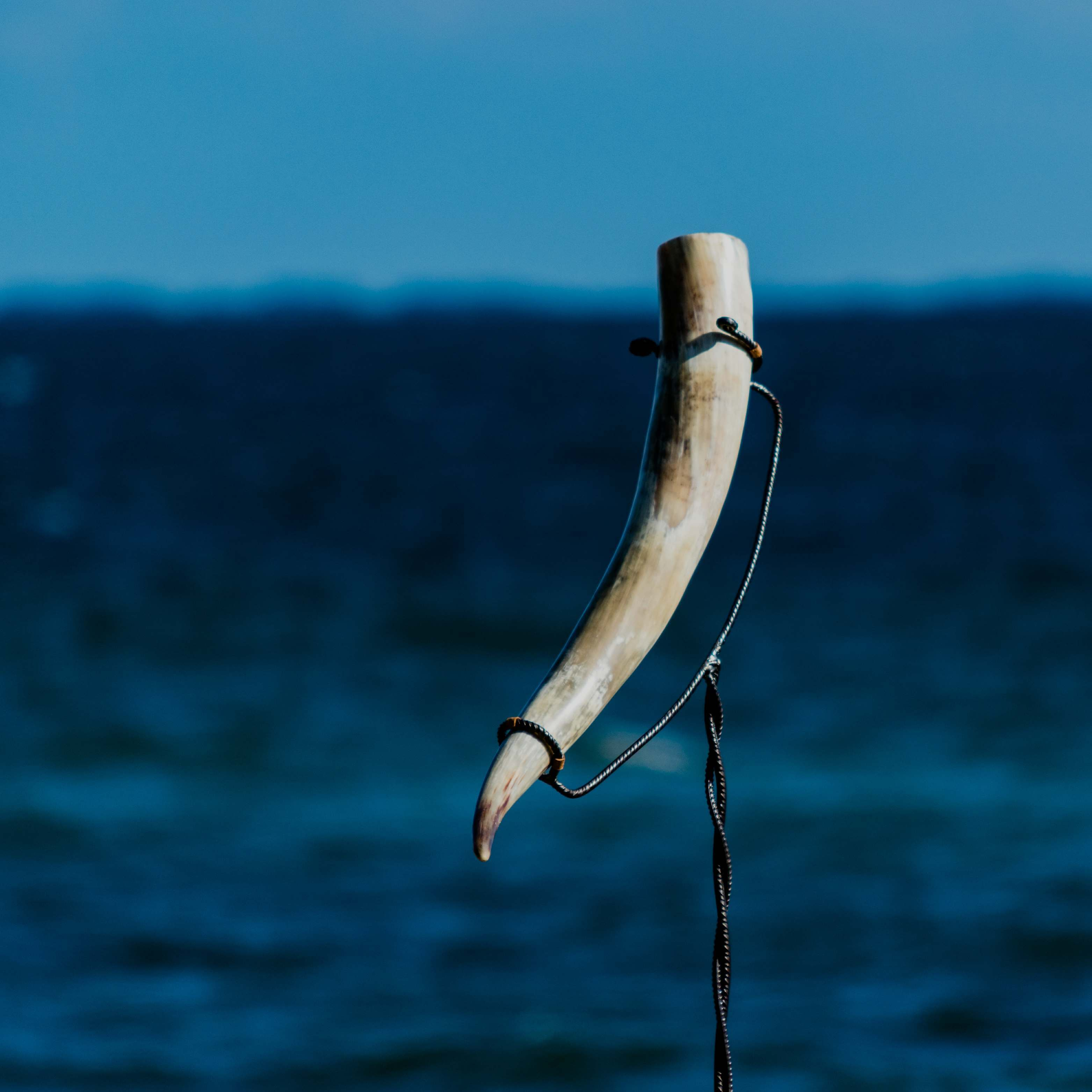 Viking horn on a stand with ocean in the background