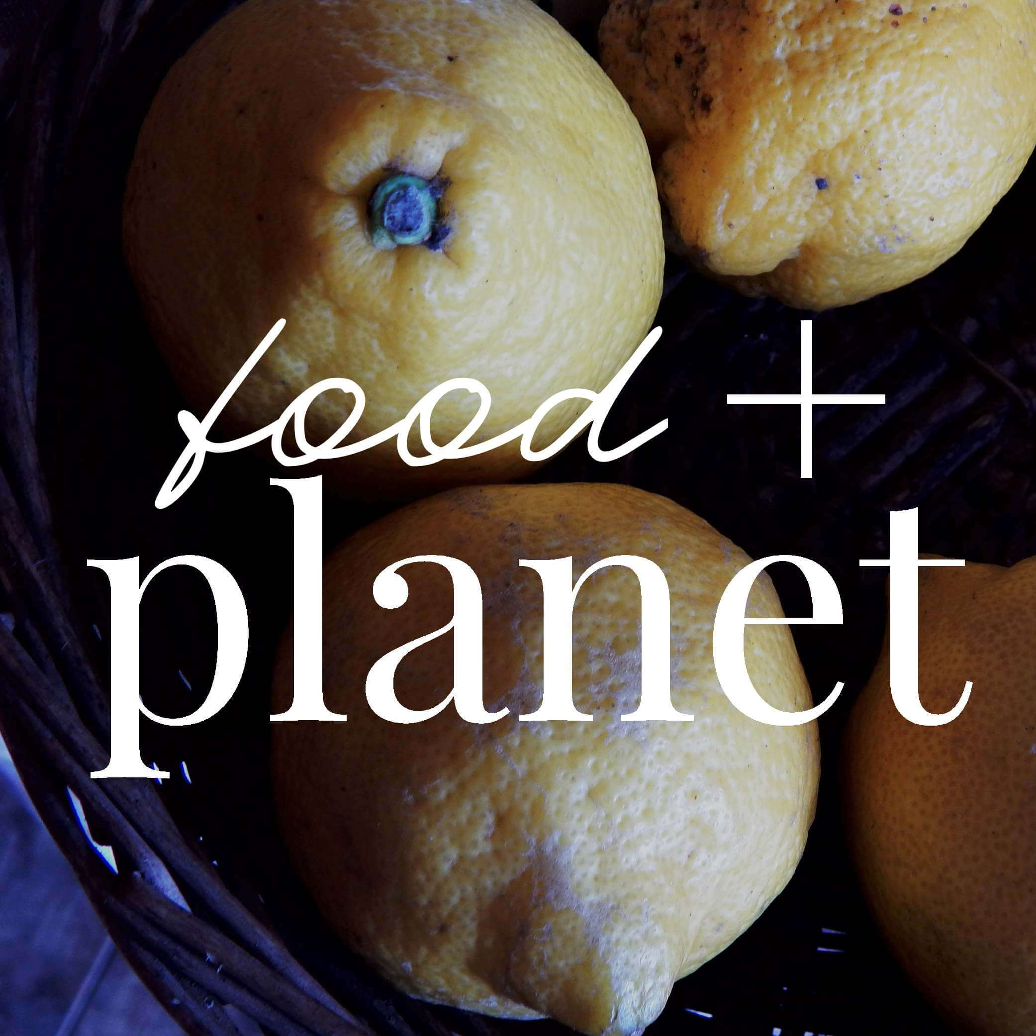 Lemons in a basket with text overlaid: 'food + planet'